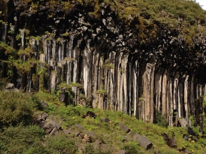 Rocks that look like trees