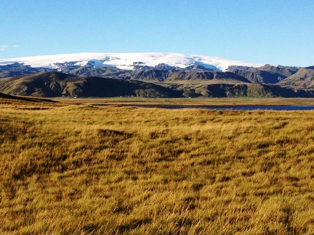 Puffin nature reserve